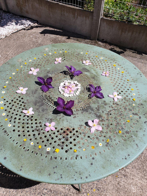 land art violette